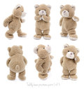 Teddy bear positions teddybear showing different set of Royalty Free Stock Photo