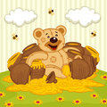 Teddy bear among pot of honey on meadow