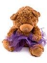Teddy bear in purple tutu skirt Royalty Free Stock Photo