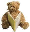 Teddy bear reading Royalty Free Stock Photo