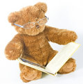 Teddy bear reading a book Stock Image