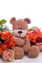 Teddy bear with red roses brown Stock Photography