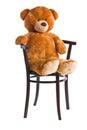 Teddy bear sitting on a chair Royalty Free Stock Photo
