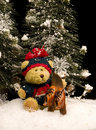 Teddy Bear with Skis Stock Images