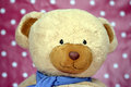A teddy bear with spotty red background closeup Royalty Free Stock Photography