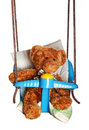 Teddy bear in swing Royalty Free Stock Image