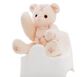 Teddy bear on a white potty flower demonstrating use of for toilet training isolated part of series featuring the same Stock Images