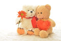 Teddy bears two with flower and heart Stock Image