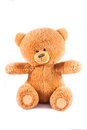 Teddy isolated bear on a white background Stock Photos