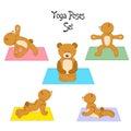 The teddy yoga