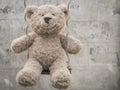 Teddybear on a swing playing swingn Royalty Free Stock Photos
