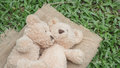 Teddybears embracing lying on the grass in the park relaxing Royalty Free Stock Photo