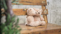 Teddybears embracing while sitting on a bench selective focus Stock Photos