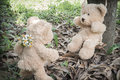 Teddybears with flowers in the park showing their love by giving Royalty Free Stock Photography