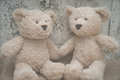 Teddybears holding hands sitting against a white wall Stock Image