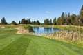 Tee off over Pond Royalty Free Stock Photo
