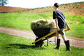 Teen chores a teenage boy pushing a wheelbarrow full of hay down a country road wearing mud boots shallow depth of field Royalty Free Stock Images