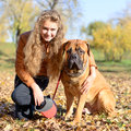 Teen girl and dog bullmastiff sit in the park in autumn Royalty Free Stock Image