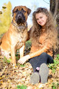 Teen girl and dog bullmastiff sit in the park in autumn Stock Photography