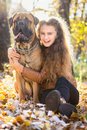 Teen girl and dog bullmastiff sit in the park in autumn Royalty Free Stock Images