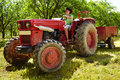Teenage boy driving the tractor teenager with hat an old with trailer through an orchard Royalty Free Stock Photography
