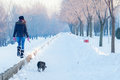 Teenage girl walking the dog on cold sunny winter day Royalty Free Stock Photo