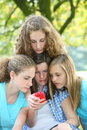 Teenage girls reading an sms message as they group together around a mobile phone outdoors in the park Royalty Free Stock Images