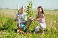Teenager brother and sister sets tree Royalty Free Stock Photo