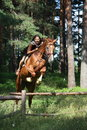 Teenager girl jumping over the fence with horse in forest Royalty Free Stock Photography