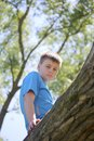 A teenager poses for a photographer while walking in the park. Climbed a tree and sits.