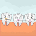 Teeth with braches vector illustration of using for treatment Royalty Free Stock Image