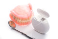 Teeth model with dental floss and mouth mirror on white background Royalty Free Stock Photo