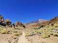 Teide national park tenerife canary islands spain Stock Photos