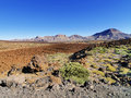 Teide national park tenerife canary islands spain Stock Images