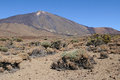 Teide volcano plain 2 Royalty Free Stock Photo