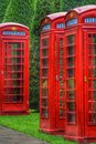 Telephone box garden flowers tree old colors Stock Photos