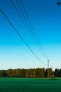 Telephone lines leading to the forest summer night sun lights up poles it s very late but midnight sun is just setting in northern Royalty Free Stock Image