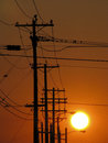 Telephone poles at sunset Royalty Free Stock Photo
