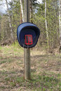 Telephone public in the forest nobody Royalty Free Stock Photo