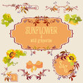 Template and border elements set with sunflower and grape Royalty Free Stock Photo