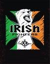 Template Irish fighters