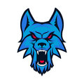 Template of logo with angry wolf head. Emblem for sport team. Ma
