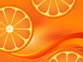 Template with orange fruit slices Royalty Free Stock Photo
