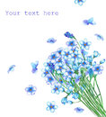 A template of postcard with a bouquet of the watercolor blue forget-me-not flowers Royalty Free Stock Photo