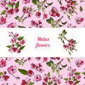 Template with seamless pattern and stickers of blossoming pink branch of apple tree and flowers. Hand drawn colored sketch.