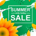 Template summer sale poster. Realistic sunflower with petals Royalty Free Stock Photo