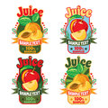 Templates for labels of juice from red apple and apricot