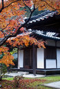 Temple building and fall foliage Stock Photography
