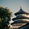 Temple of heaven the in beijing china Royalty Free Stock Image