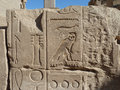 Temple of karnak column with carvings in luxor egypt Royalty Free Stock Photos